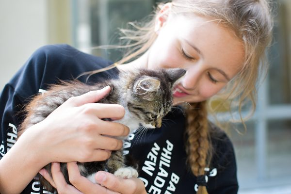 August 2020. Happy Girl Adopting A New Cat From Shelter