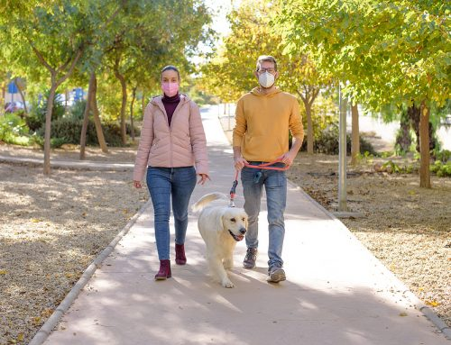 Tips for Socializing Your Dog During COVID-19