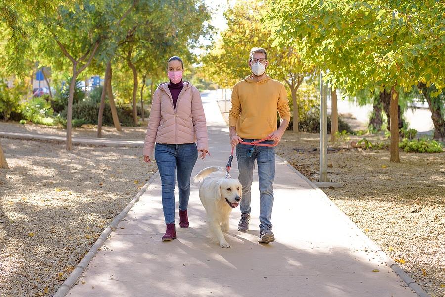 Young couple in medical surgical masks holding walks with dog in the summer park; socializing during pandemic